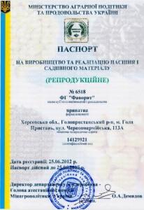 Pasport - 0001
