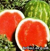 bessemyanniy_arbuz