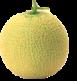melonl